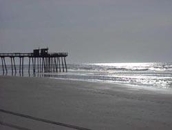 Community profile for Ocean crest fishing pier
